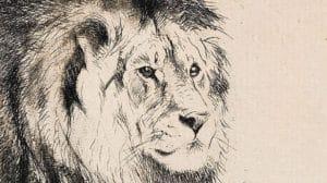 L'absence du lion pour l'éléphant, Hans Blumenberg