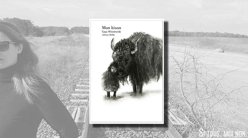 Mon bison au fond du puits